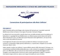 Convenzione Rete Collisioni